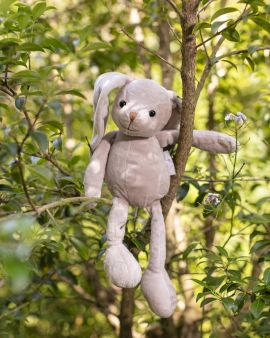 Brodie the Bunny sitting in a tree.
