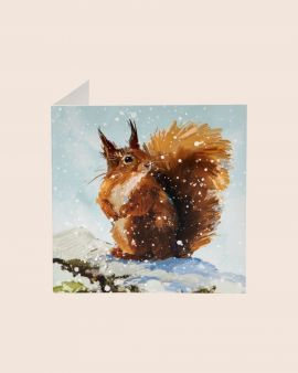 Pack of 10 Christmas Cards with Red Squirrel Design
