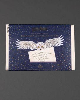 The packaging of the Hogwarts Acceptance Letter tea towel. It features an owl carrying a letter addressed to Harry Potter.